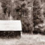 """Colorado Barn in Sepia"" by Cynthia_Burkhardt"