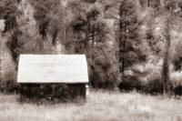 Colorado Barn in Sepia