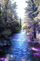 St. Vrain Creek at RMNP
