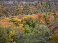 Niagara gorge autumn hues
