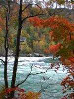 Niagara river through autumn trees 3
