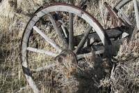 Old Wooden Wagon Wheel in sage brush - 7881