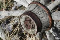Old Wooden Wagon Wheel Hub - 7884
