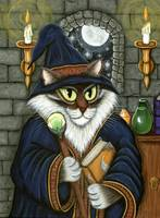 Merlin The Magician ; Wizard Cat Magic