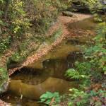 """Fall Creek Gorge - Potholes Above #1 (IMG_6413)"" by jvandyke"