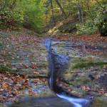 """Fall Creek Gorge - Tributary Stream (IMG_6323)"" by jvandyke"