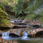 """Fall Creek Gorge - Potholes #1 (IMG_6324)"" by jvandyke"