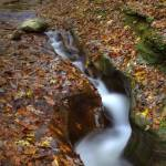 """Fall Creek Gorge - Carved Rock #1 (IMG_6358+)"" by jvandyke"