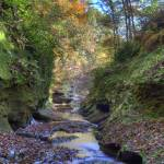 """Fall Creek Gorge - Looking Downstream (IMG_6376+)"" by jvandyke"