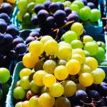 """Grapes 8803"" by photohogdesigns"
