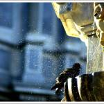 """Little Shower"" by 35mmcameras"