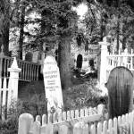 """Barkerville Cemetary"" by britishcolumbia"