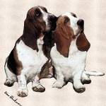 """BassettHounds"" by diane"