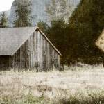 """Rustic Barn In Autumn"" by mattnjohnson"