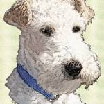"""Wire Fox Terrier"" by diane"