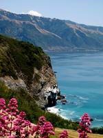 Colors of Big Sur, California