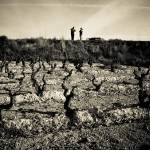 """""""Vines in La Rioja"""" by RyanOpaz"""