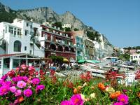 Capri's Marina With Flowers