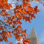 """washington monument fall foilage no-4"" by dcphoto"