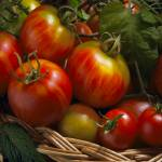 """""""Home Grown Tomatoes"""" by bobbretell"""