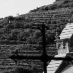 """""""Holy Vineyards"""" by josejlepe"""