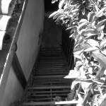 """Scary Stairs"" by guarabamba"