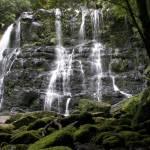 """Nelson Falls"" by CRpixs"