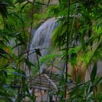 """waterfall, three images handheld didn"