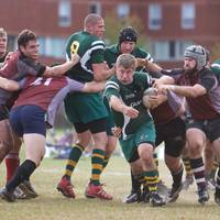 Wolfhounds D3 vs MIT 13