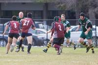 Wolfhounds D3 vs MIT 99