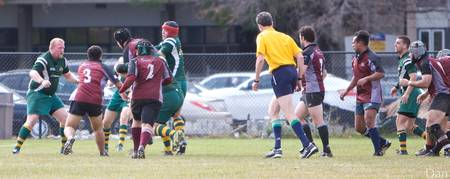 Wolfhounds D3 vs MIT 100