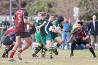 Wolfhounds D3 vs MIT 82