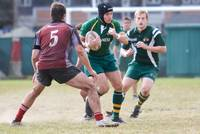 Wolfhounds D3 vs MIT 85