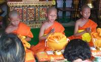 Young Thai Monks at Their Ordination Ceremonies