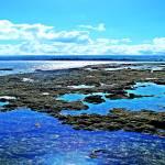 """Waialua Beach Scenes"" by Hawaiian-Prints"