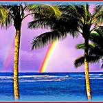 """Hawaiian Rainbow"" by Hawaiian-Prints"