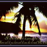 """""""Tropical art with words of wisdom"""" by Hawaiian-Prints"""