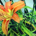 """A Sunny Summer Daylily"" by soothedbyrainfall"