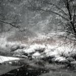 """Storm"" by BobW"