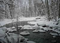 Snowy Creek in winter