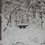 """Snow-covered Bench"" by Nanwright"
