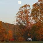 """Moon Rising"" by jones3006"
