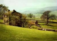 yorkshire dales spring