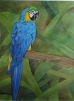 Brilliant Blue Parrot Professional Watercolor Pain