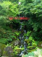 Have you ever been in Hirosaki?