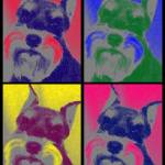 """Pop Art Schnauzer"" by malibuitalian"
