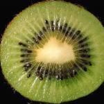 """Kiwi"" by malibuitalian"