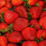 """Strawberries"" by snapshotsbysandy"