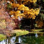"""""""Fall Pond"""" by Lefty231983"""