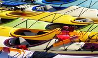 Kayaks Colours